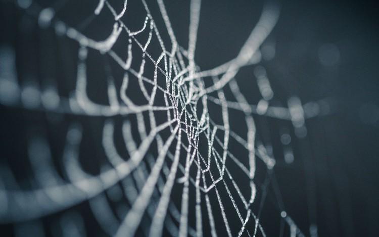 Halloween Use Cases and Spooky Ideas for Your AR App