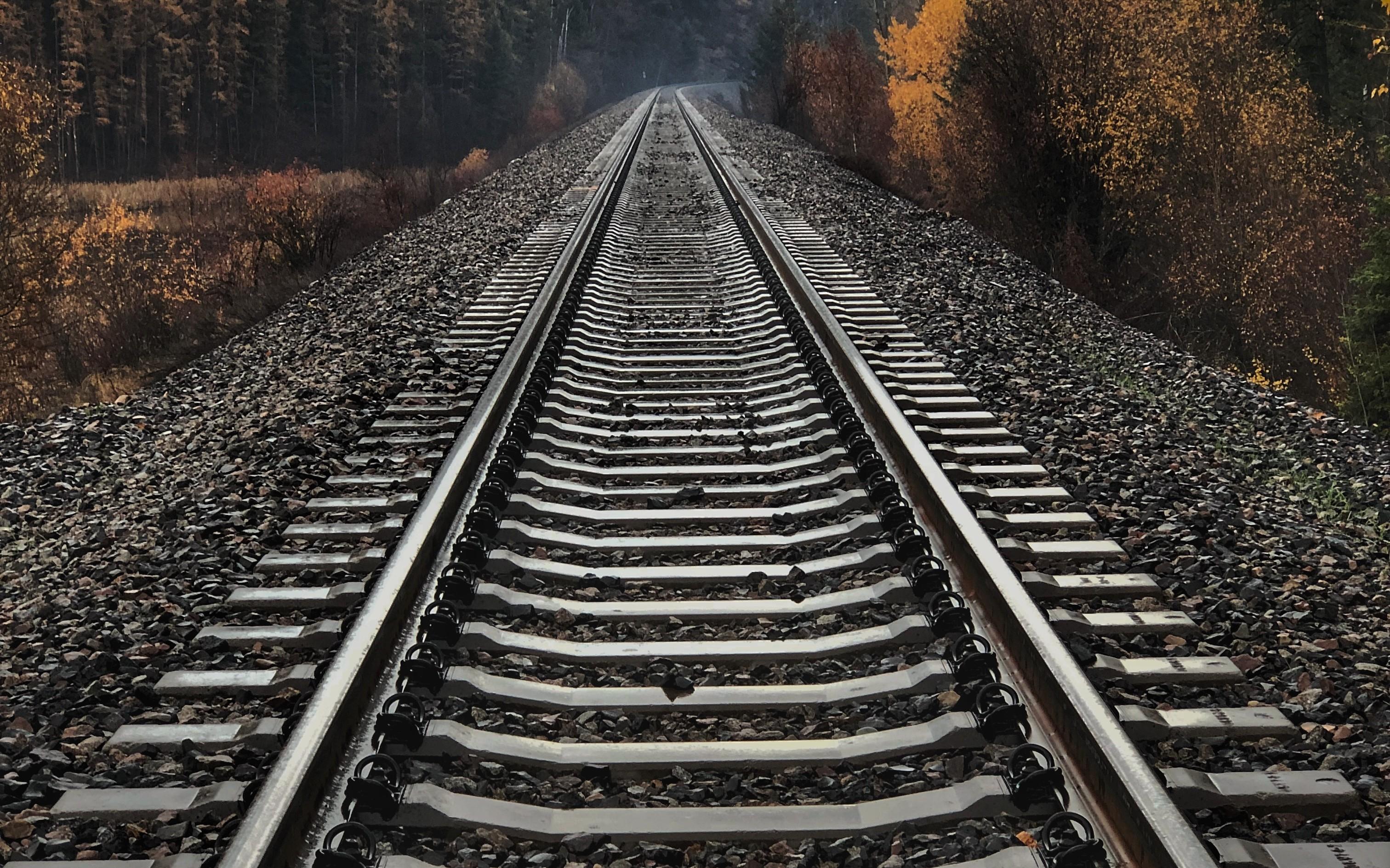 Rails Logger and Rails Logging Best Practices - DZone Web Dev