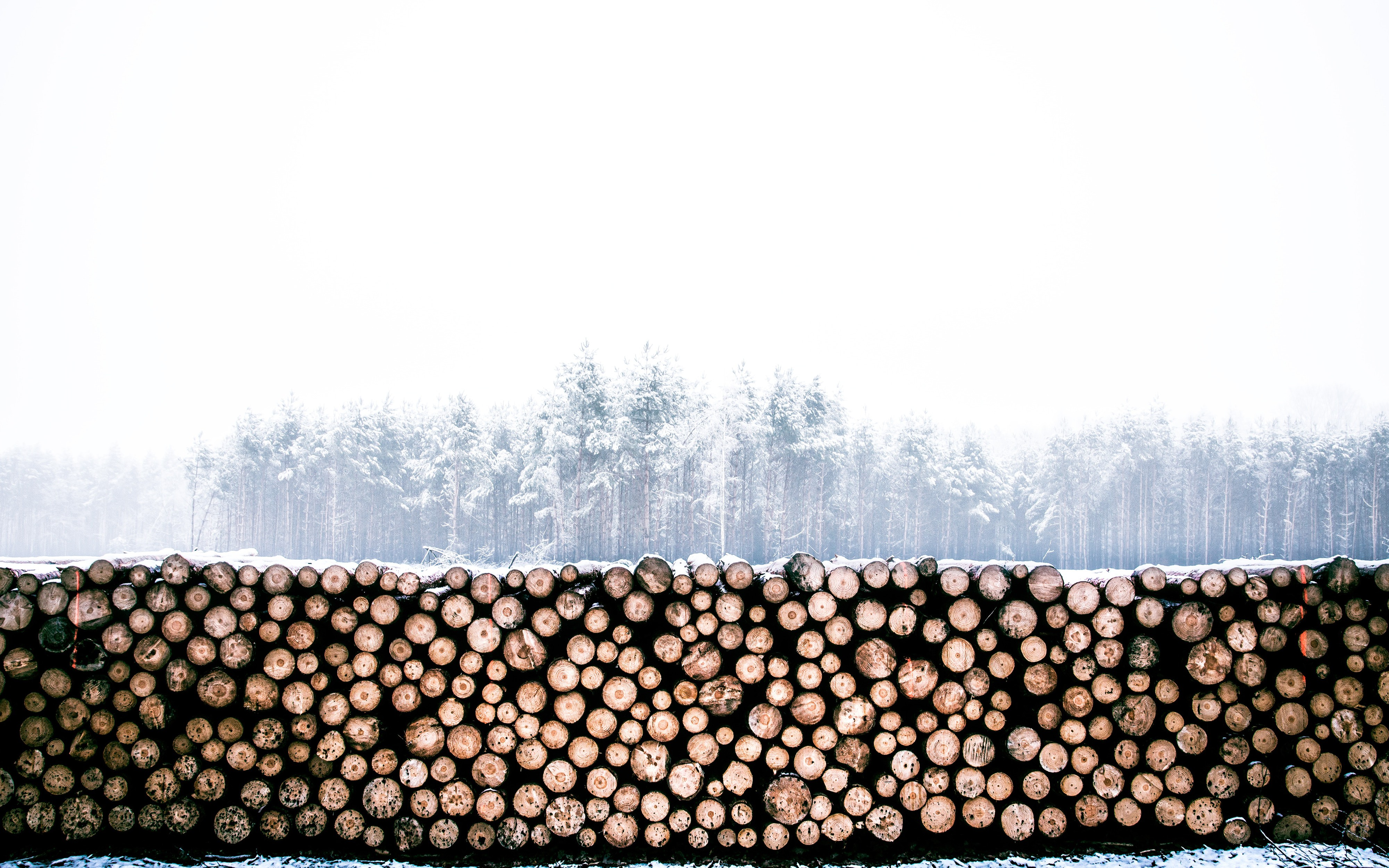 Logging Using Log4Net and gelf4net to ELK running on Docker
