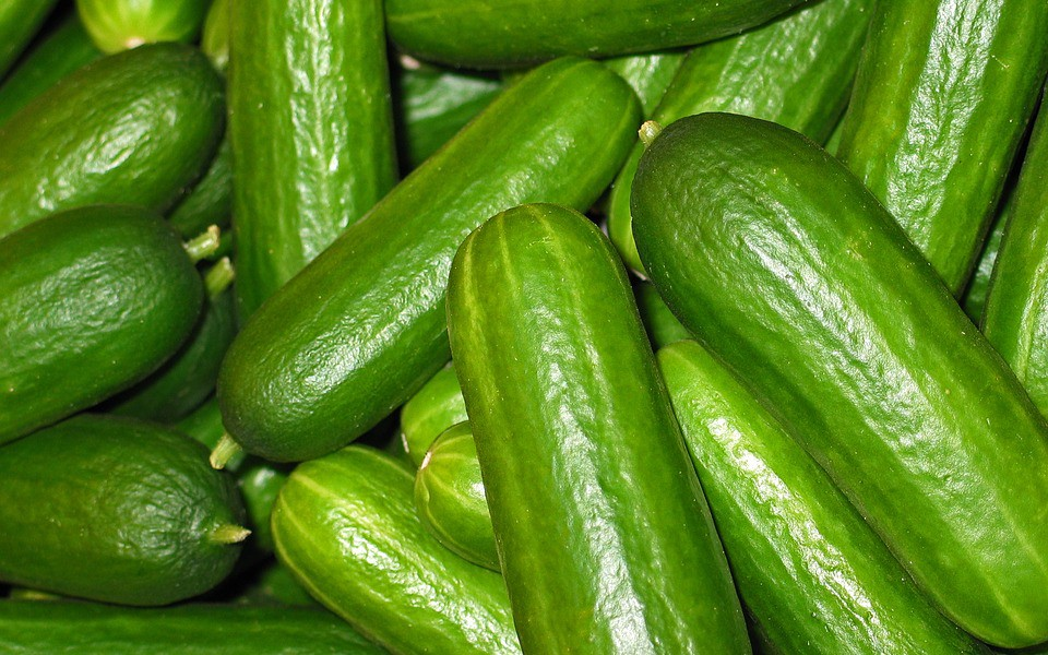 A Guide to Cucumber Best Practices - DZone DevOps