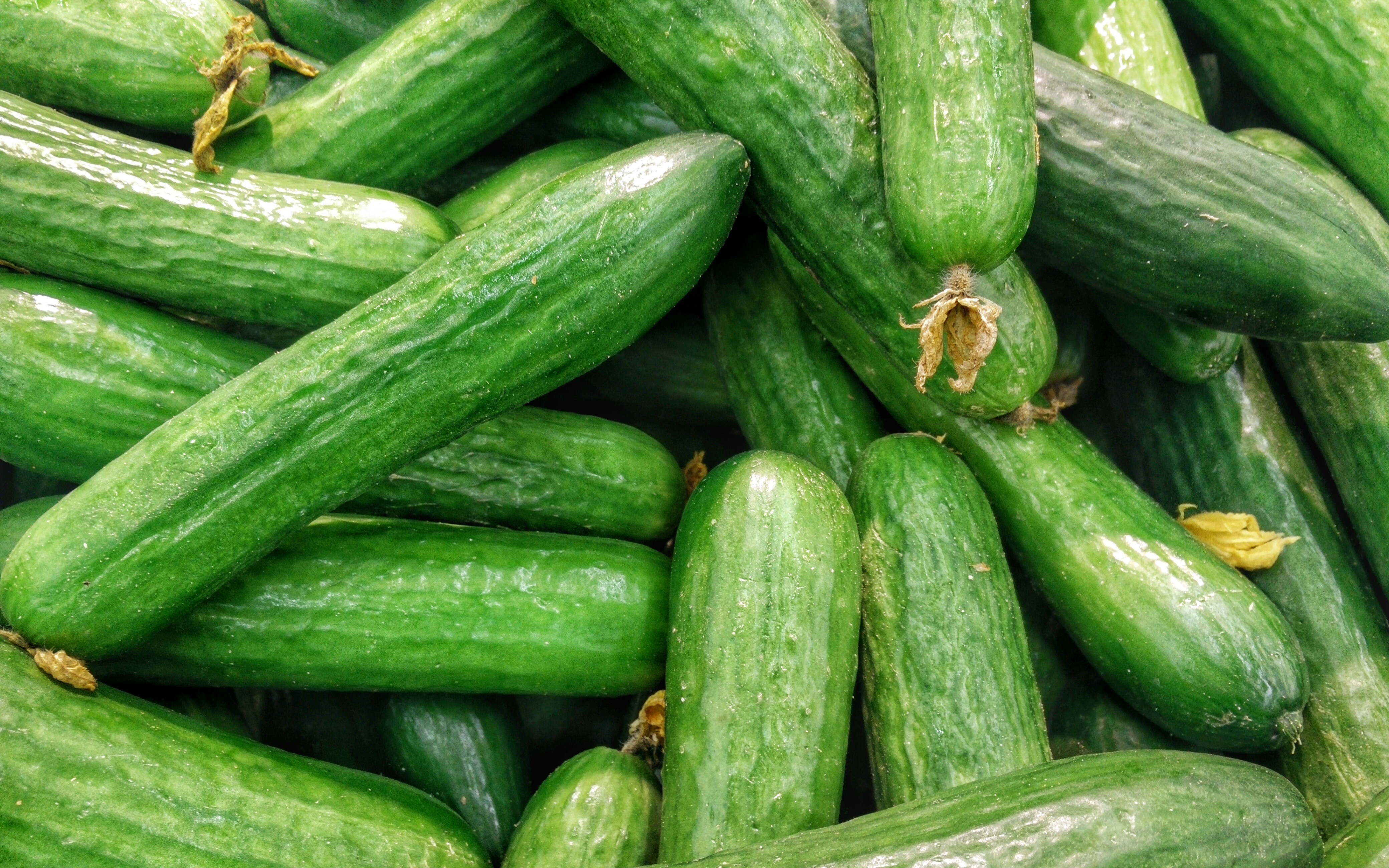Why do banks with cucumbers explode Main reasons