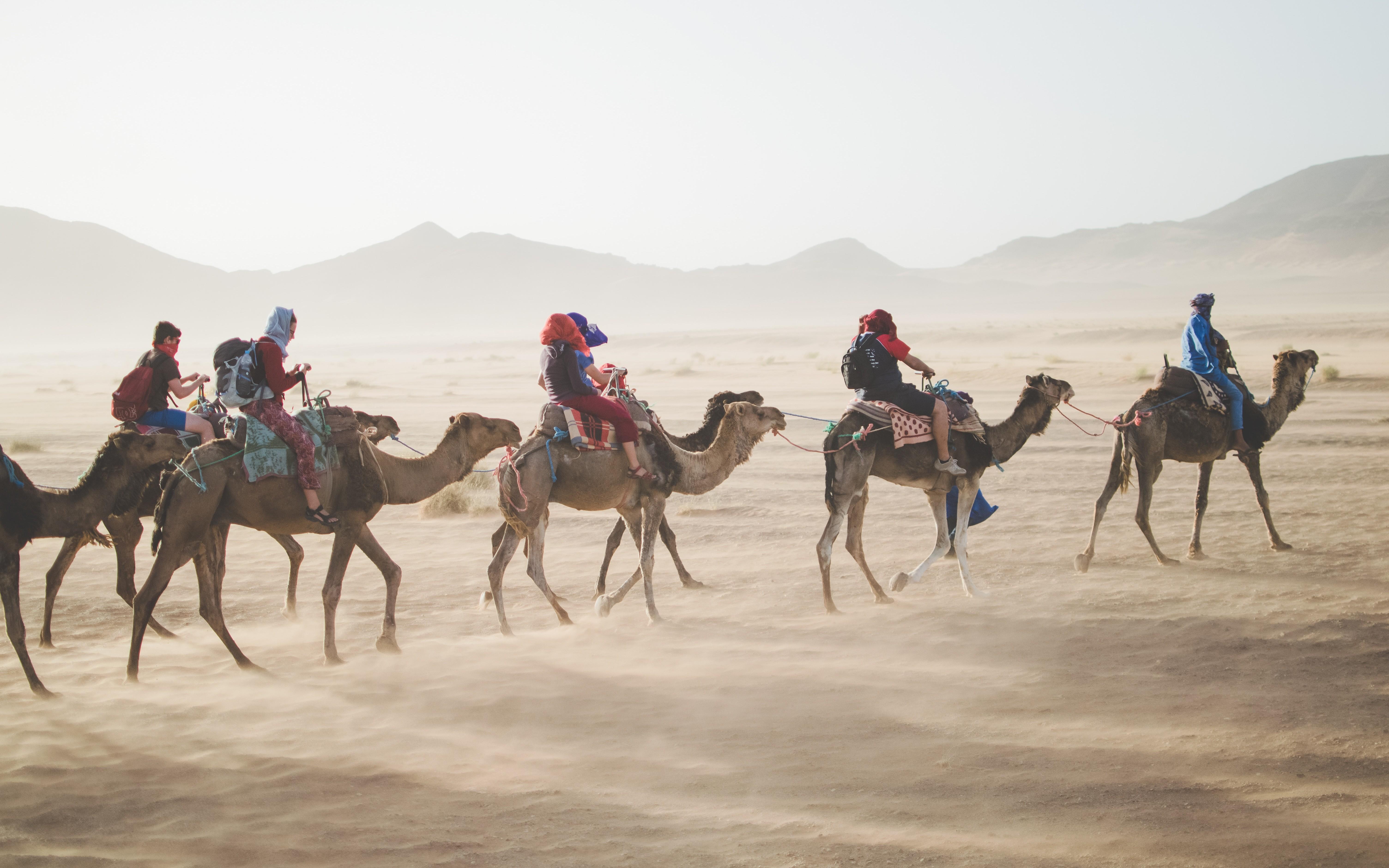 Camel Routes - DZone Integration