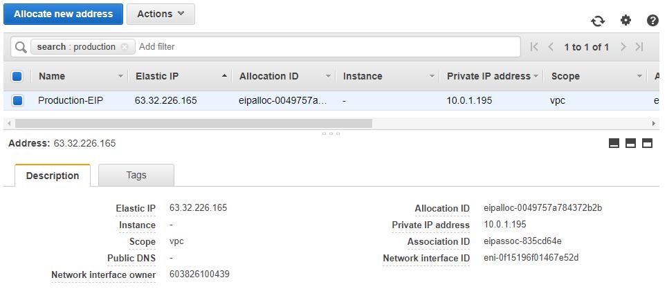 Elastic IP Address: AWS Console