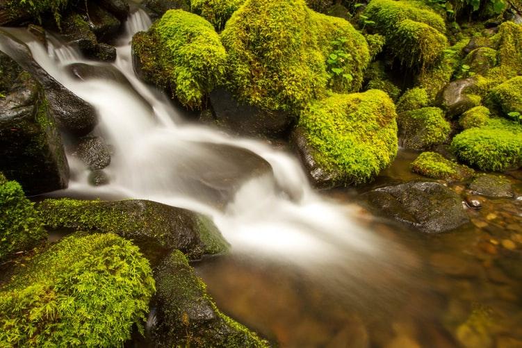 Immediate operations in Java streams
