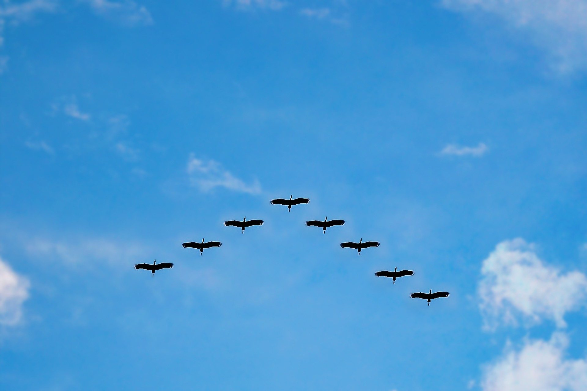 How To Plan A Successful Cloud Migration Dzone Cloud