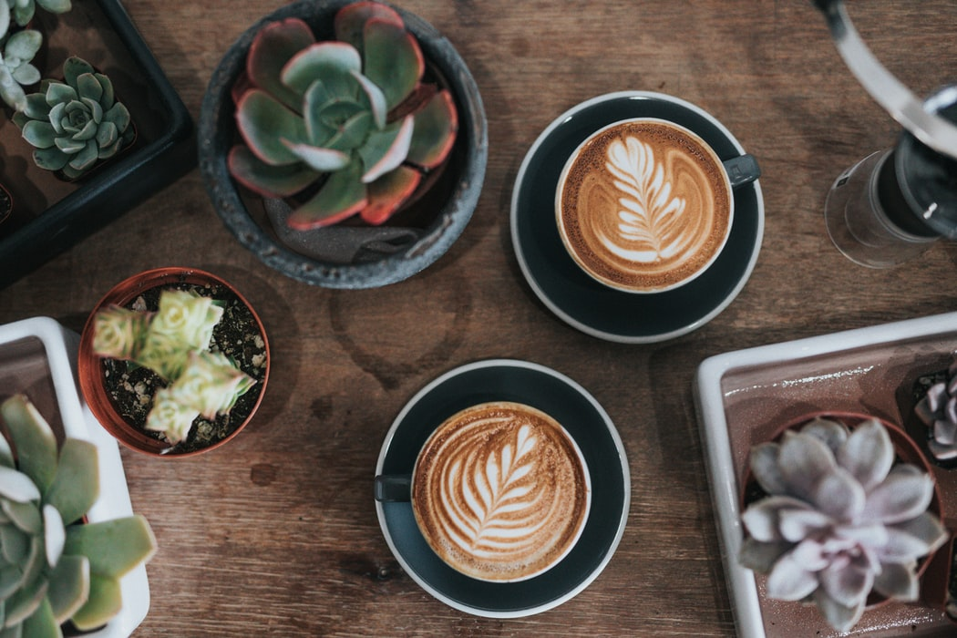 two coffees with plants
