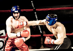 fight night punch test by djclear904, on flickr