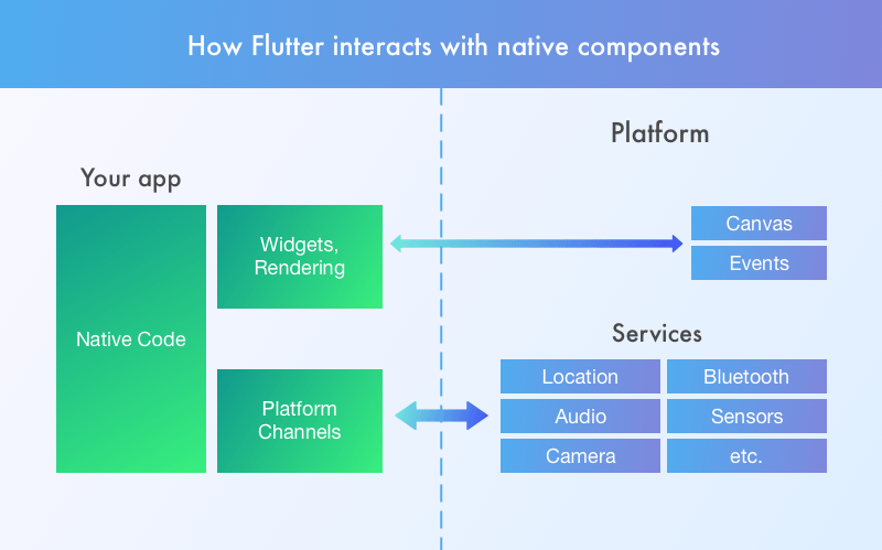 How Flutter interacts