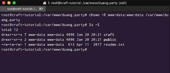 Change the ownership of the Craft directories to www-data