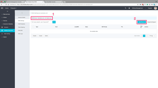 Configure your Domain DNS servers and Add Record