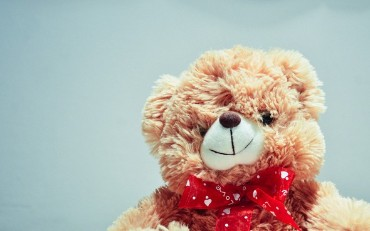API Security Lessons From Fisher-Price's Smart Toy Bear Security Flaw