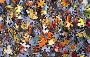 Local Microservices: Breaking Up the Jigsaw