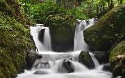 Should I Parallelize Java 8 Streams?