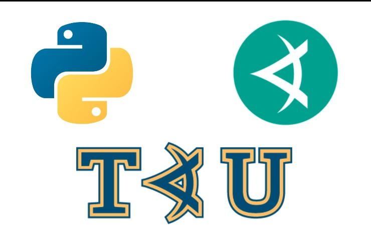 Should You Take a Python Course?