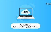 Popular APIs for the Internet of Things (IoT) Systems