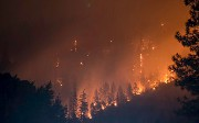 Using AI To Predict Forest Fires